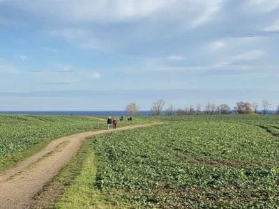 Feldweg von Alt-Bülk zur Ostsee