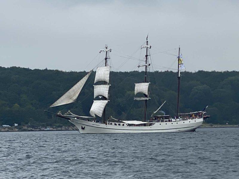 Segelschiff Artemis Kieler Förde