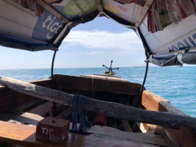 Bootsfahrt mit Nesselkutter Netzgetüdel