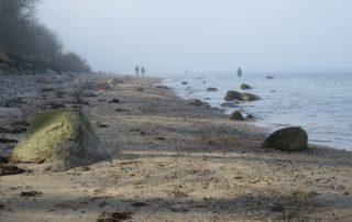 Naturstrand Dänisch-Nienhof an der Ostsee