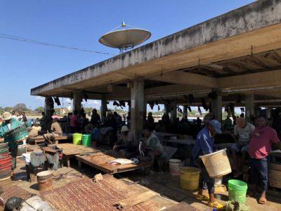 Fischmarkt & Nesselkutter Netzgetüdel