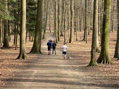 Joggen im Wald Tiergehege Tannenberg