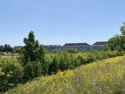 Kiel Wik Schleusenpark Blick Richtung Marine-Quartier