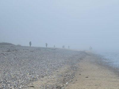 Nesselkutter Netzgetüdel & Nebel am Ostseestrand