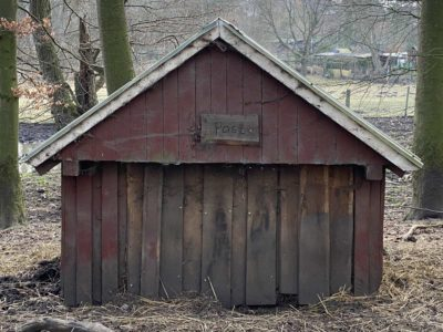 Wildschwein Hütte