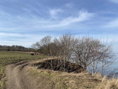 Ostsee Steilküste Dänisch-Nienhof Februar 2021