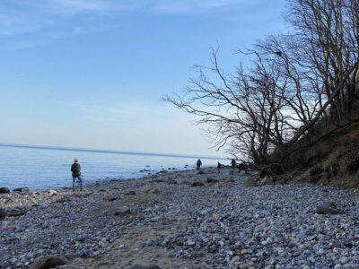 Ostsee Strand Dänisch-Nienhof Naturstrand