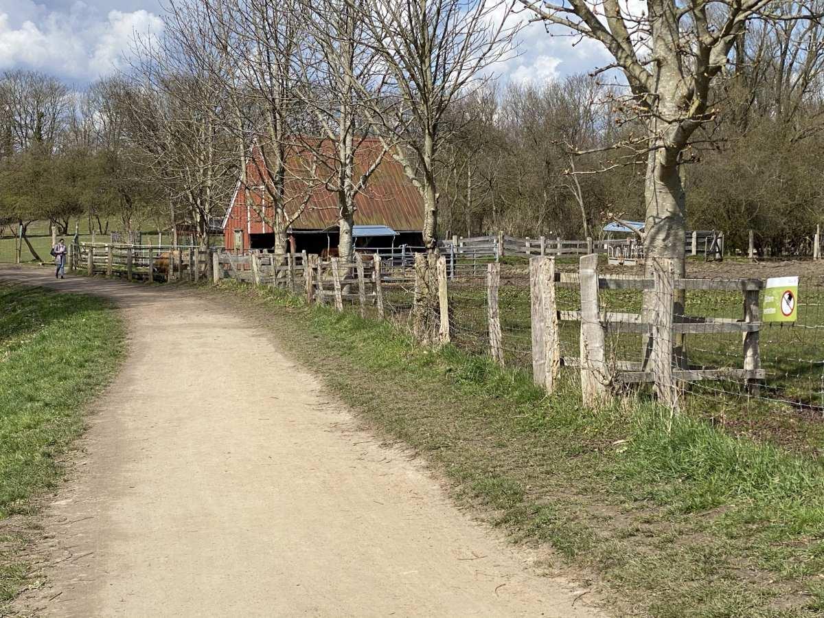 Tiergehege Suchsdorf