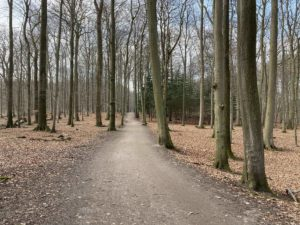 Wald Tiergehege Tannenberg Kiel