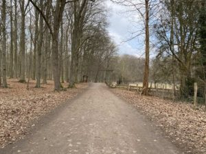 Waldweg Tiergehege Tannenberg