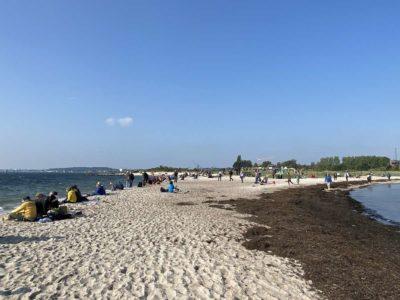 Windjammerparade 2020 Zuschauer Falckensteiner Strand